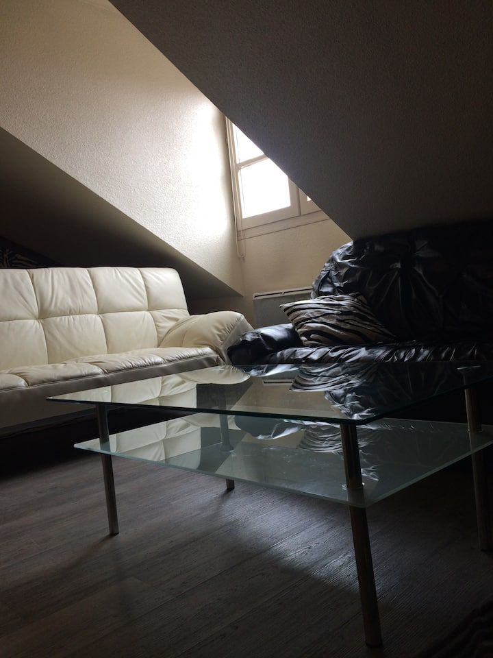 Cosy Appartment The Best Price IN DOWTOWN FREEPARK