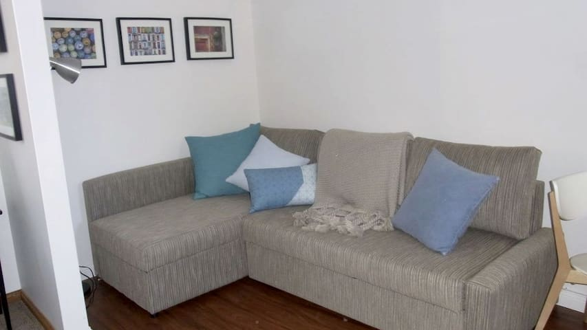 Sofa bed (an extra bed for children or other guests)