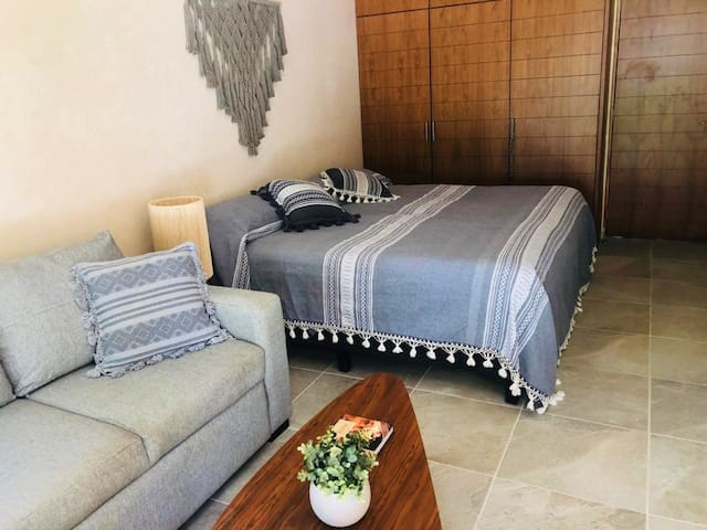 Large bedroom with king size bed and sofa bed  at the back of the house, space is very large, it has a very large closet.