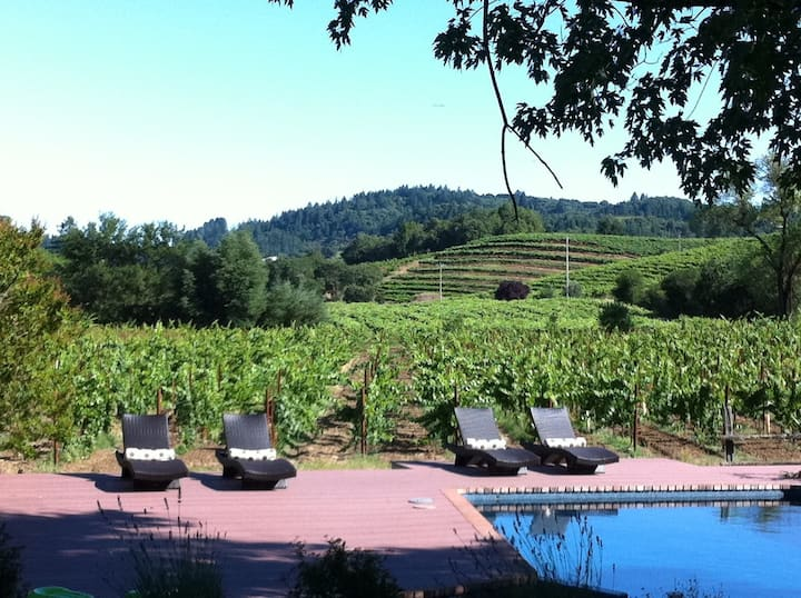 Creek Front Vineyard, West Dry Creek Healdsburg CA