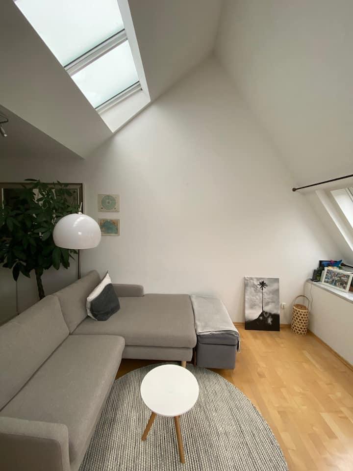 Cozy Rooftop Apartment in the heart of Maxvorstadt