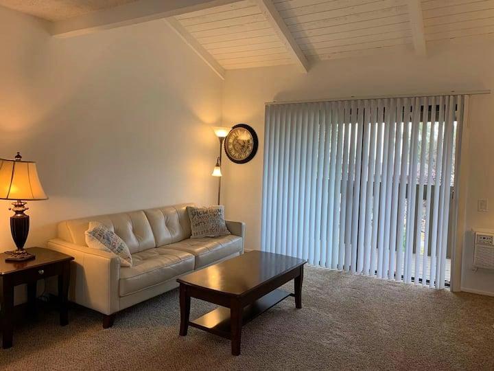 尔湾(IRVINE)高级公寓一室一浴,适合待产、旅游、探亲 1B1B Condo