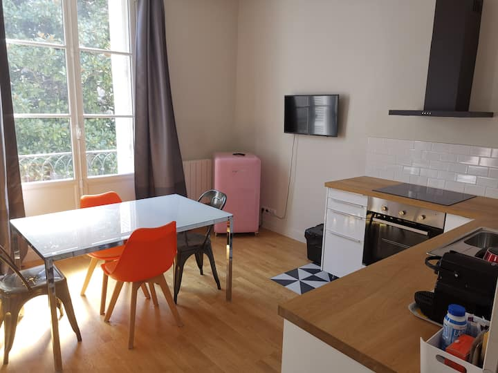 Appartement center of Tours Loire Valley