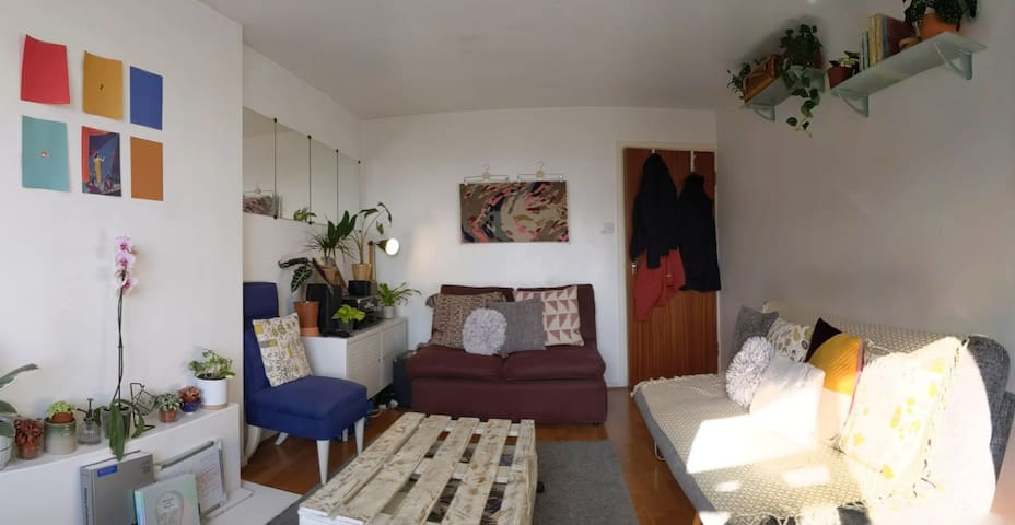 Simple and Modern Double Room in a Shared Flat