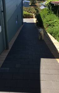 The pathway leading down to the Studio. There are motion activated security lights for night time navigation.