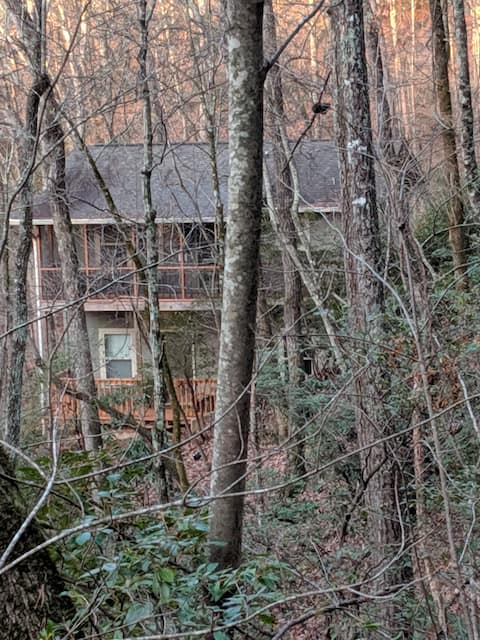 Treetops at Creekside