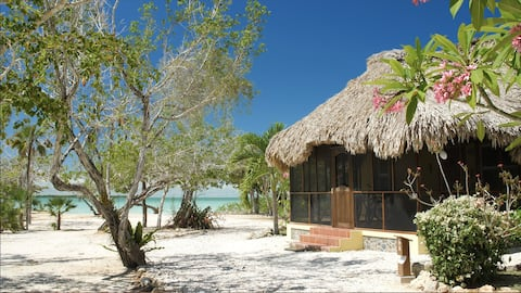 Orchid Bay Rentals Belize Casita