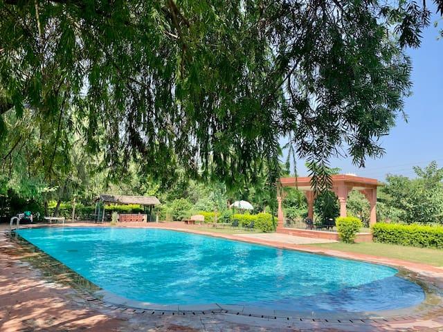 Organic Retreat near Abhaneri Stepwell & Bhangarh