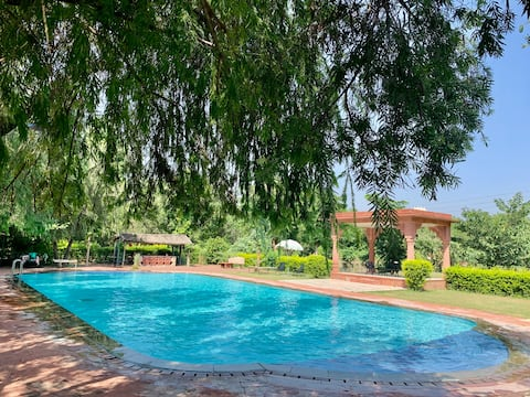 Organic Retreat near Abhaneri Stepwell & Bhangarh