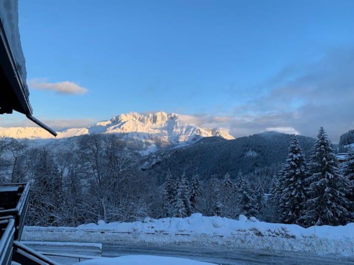 "Girasole ""snow paradise"""