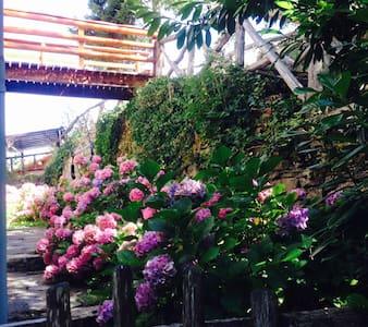 Dal parcheggio auto c'è un camminamento sul lato dx della palazzina e una scala a gradini larghi e comodi in pietra x raggiungere il ponticello in legno ( ingresso esclusivo ) e il giardino privato fronte porta di casa