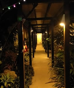 main walk way