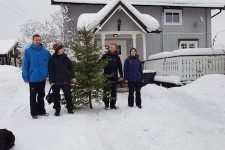 Limb your Christmas tree! FarmStay-Fitnesse-Hiking