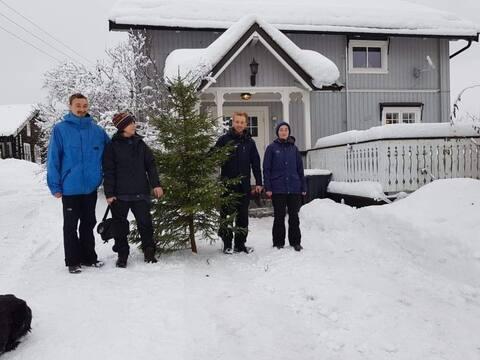 Limb your Christmas tree! FarmStay-Fitnesse-Hiking