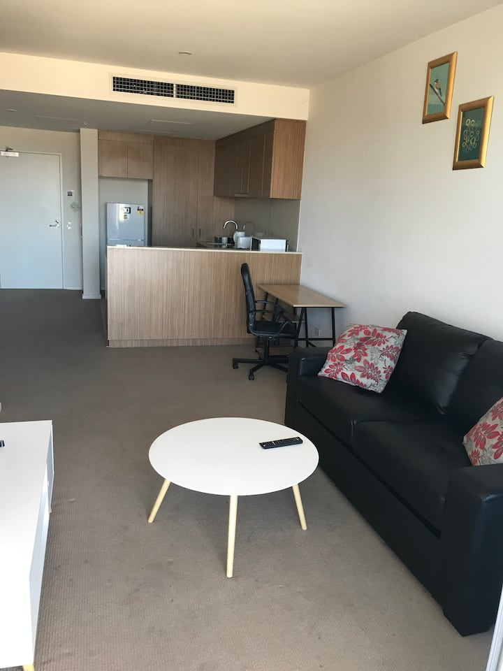 Stunning CBD 1 BR Apartment With a View - V812