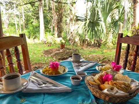 Cabaña en la Selva (bed and Breakfast)