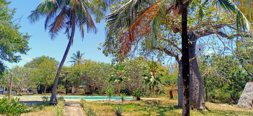 Tralee Diani Beach