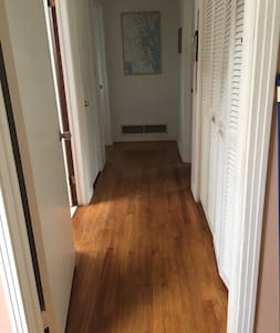 "Hallway  is 40"" wide; all the rooms are open to it and are flat, but the doorways are only 29"" wide max."