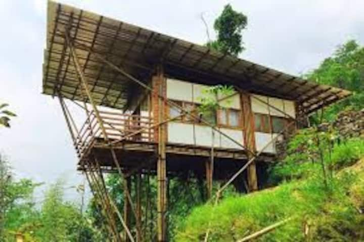 Entire Bamboo House in Darjeeling West Bengal