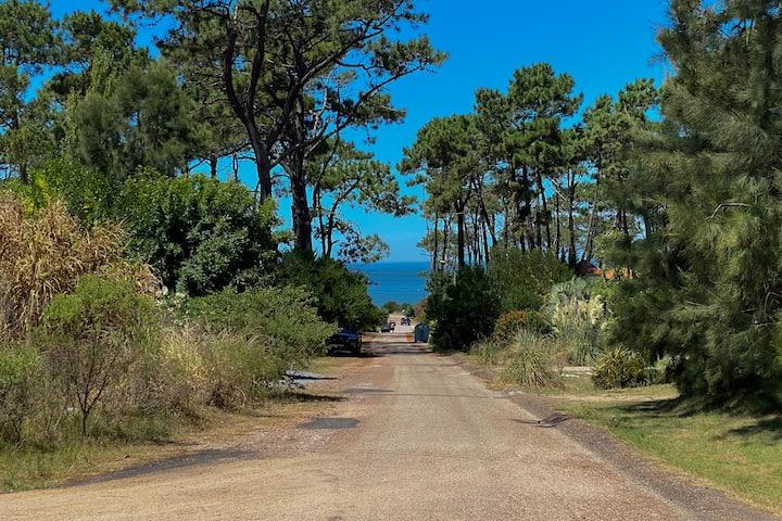 Vive Punta en el Bosque de Montoya