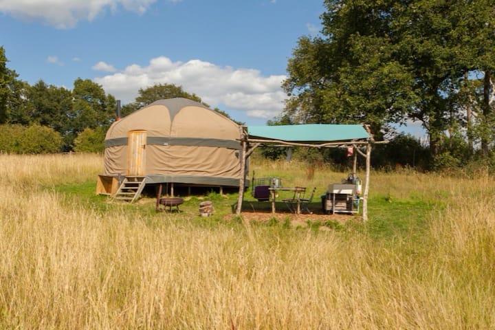 Oak - Large Woodland Yurt on Organic Dairy Farm