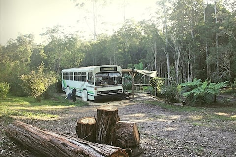 Unique, Stylish, Spacious BUS with KING Bed!