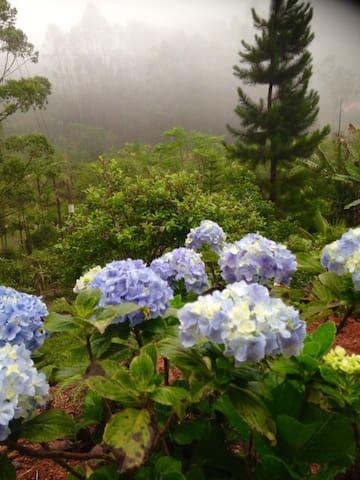 Refúgio nas montanhas em Santa Teresa