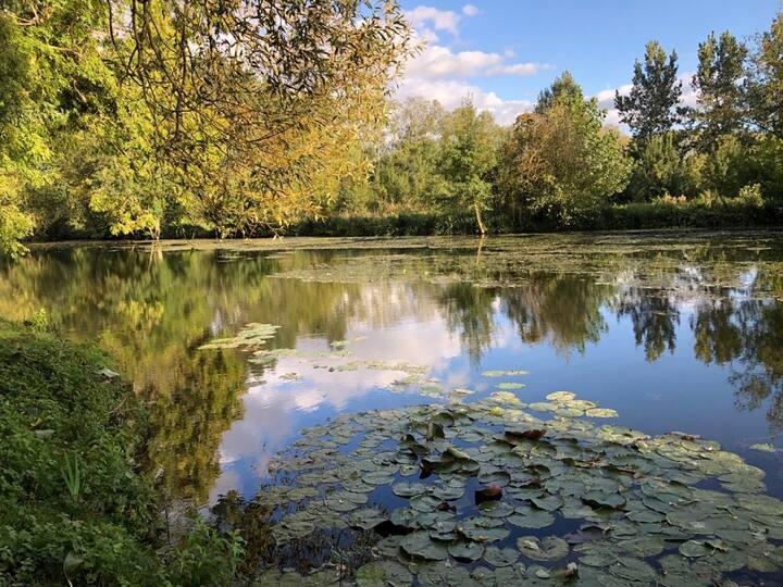 Maison calme en bord de rivière, 45' La Rochelle
