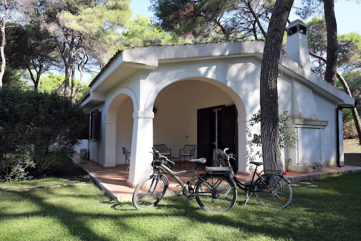 Villa Biancopini 16