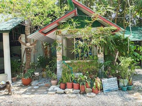 SoulfulBlissBeachHome--Pocket Home
