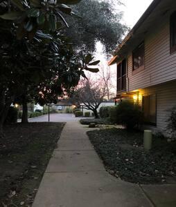 Walkway approaching home