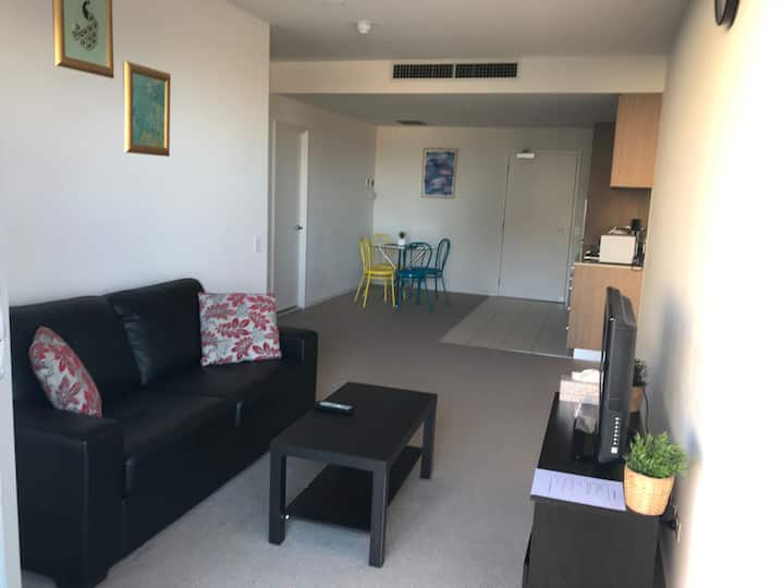 Stunning CBD 1 BR Apartment With a View - V414