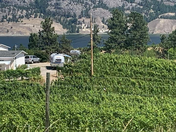 Airstream in the vineyard - Minutes from wineries