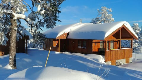 Spacious cabin and annex, 2 hours from Oslo/Larvik