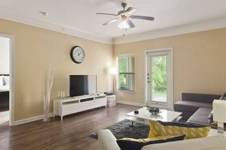 Modern 2 BR APT, Non-Smoking in Raleigh-By Candace