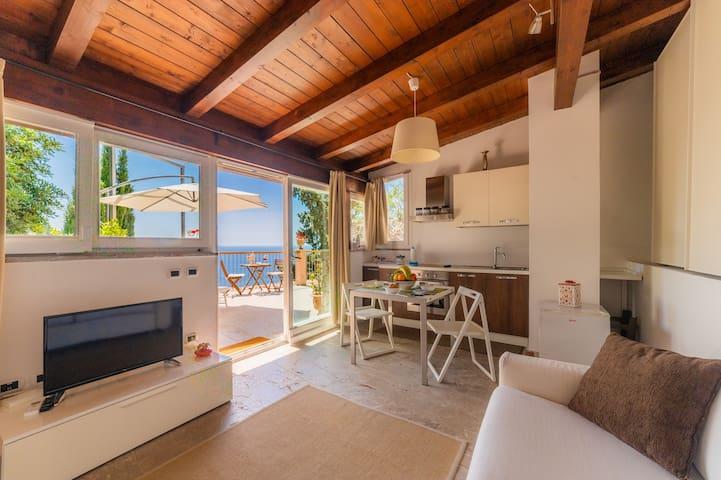 Mono locale con divano letto, cucina, Tavolo, tv e terrazza privata