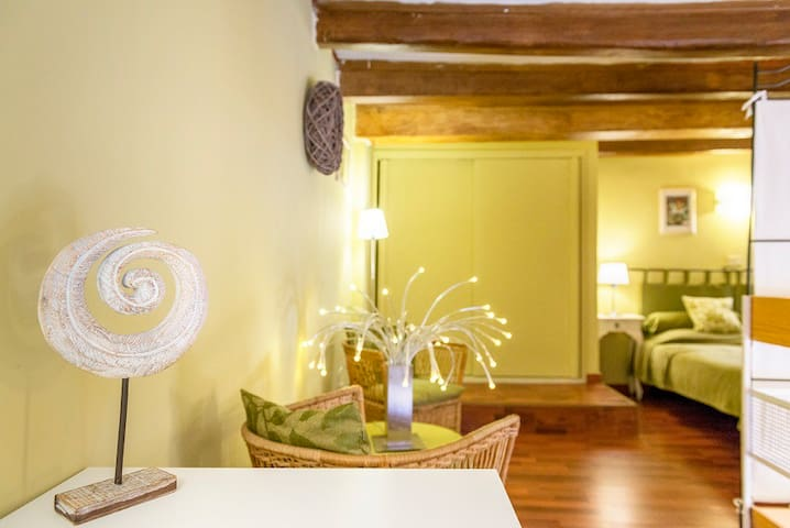 Loft in the old town centre  of Macerata 109