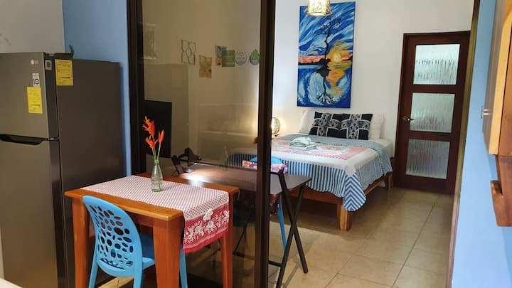 Garden apartment near the beach w/strong internet