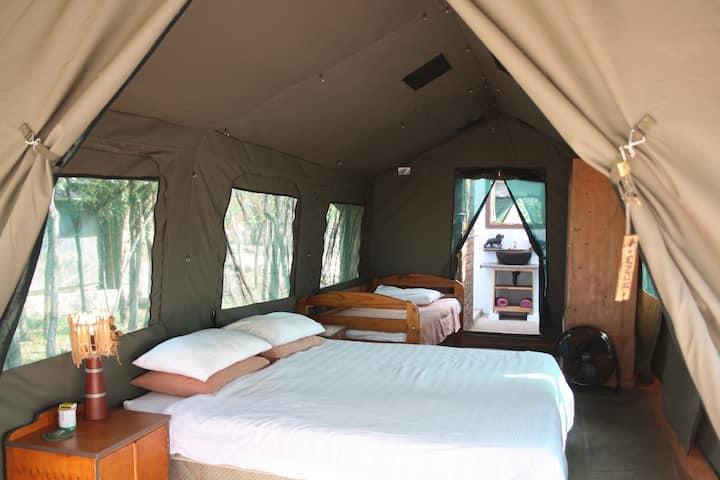 "Warthogs Safari Camp - ""Deluxe"" Triple Safari Tent"