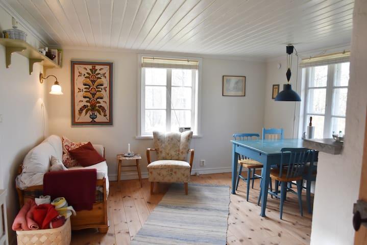 Gemensamt utrymme med bäddsoffa, köksbord och kamin/Common space with sofa bed, kitchen table, fire place