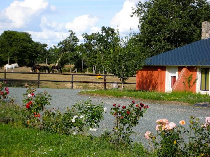 Gîte Le SALOON 14 pers Lieu insolite Ranch