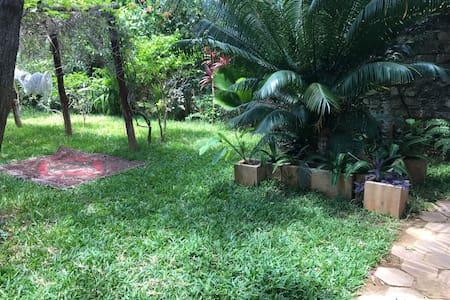 Our matured garden