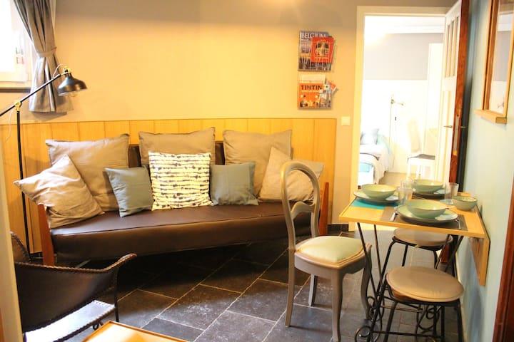 Le salon et le coin repas - Living room