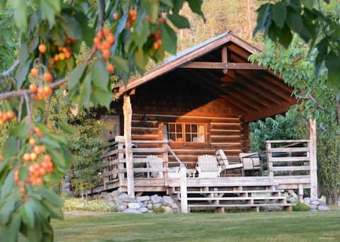 Cabaña de troncos Montana auténtica