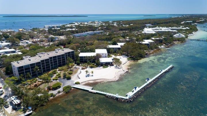 NEW Key Largo Beach Front View–Pool & Beach&Tennis