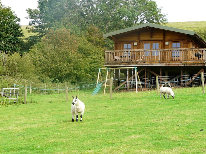 St Bees 4* Farm Stay Log cabin - CRIFFELL