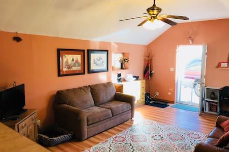 Living room and front door access