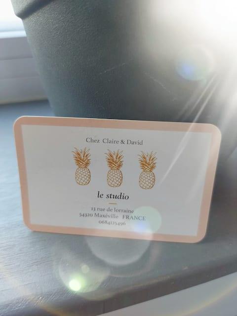 studio récent 2018 à Maxéville  Métropole de Nancy