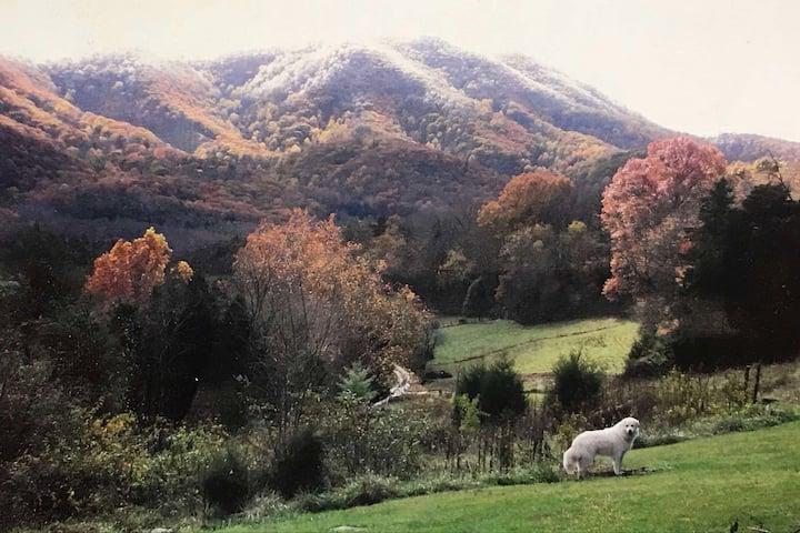 Wandering Goat Lodge