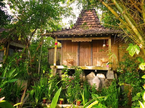 Joglo Gumuk - Eco-Lodge 1 with ricefield view